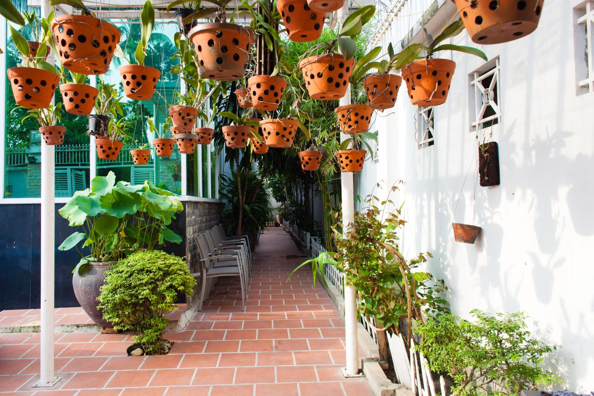 Giàn trồng lan ở ngoài sân Villa 3 tầng đường Số 20 Linh Đông Thủ Đức