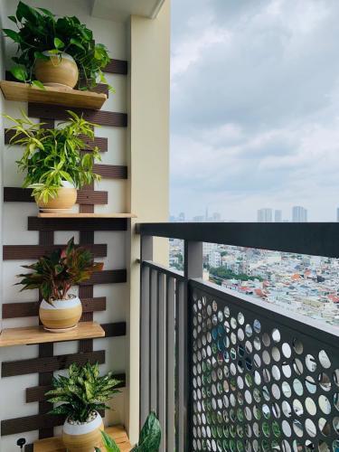 View căn hộ Saigon Mia Căn hộ Saigon Mia tầng trung đầy đủ nội thất, tiện nghi cao cấp.