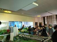 Khai trương chính thức căn hộ mẫu Palm Garden