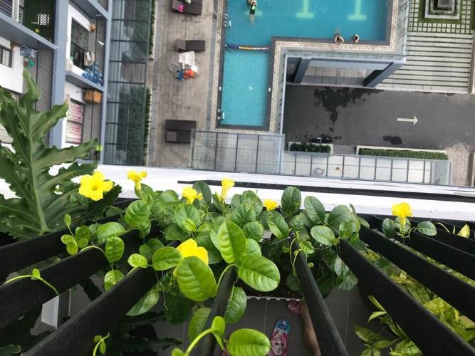 Thuê căn hộ 2 phòng ngủ thuộc tầng trung tại dự án M-One Nam Sài Gòn, Quận 7, diện tích 64m2