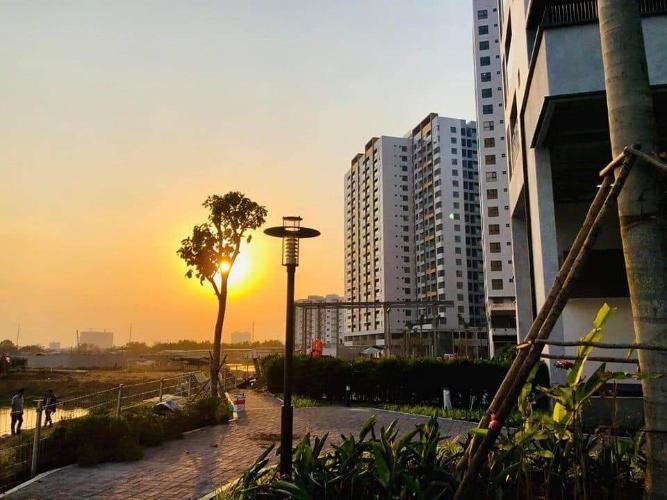 tiện ích căn hộ mizuki park Căn hộ Mizuki Park view cây xanh, sàn lót gỗ, nội thất cơ bản.