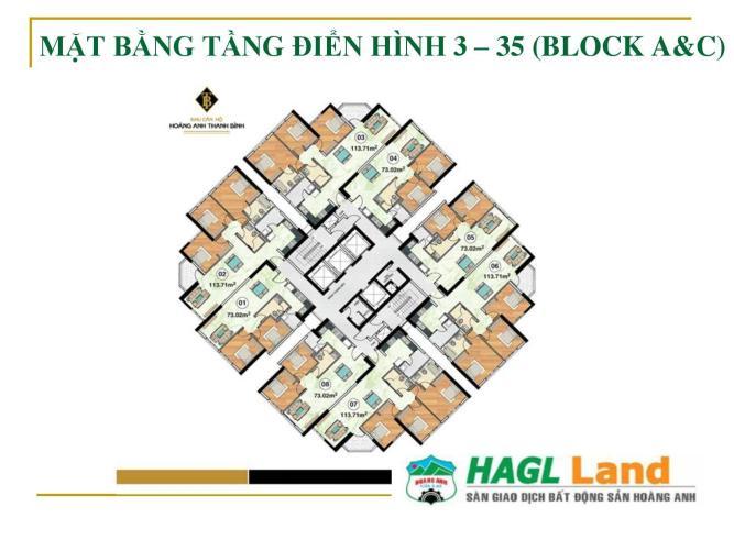 Mặt bằng block C Căn hộ Hoàng Anh Thanh Bình tầng thấp, nội thất cơ bản