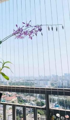 Ban công căn hộ Saigon Mia Căn hộ Saigon Mia bàn giao đầy đủ nội thất, view thành phố.