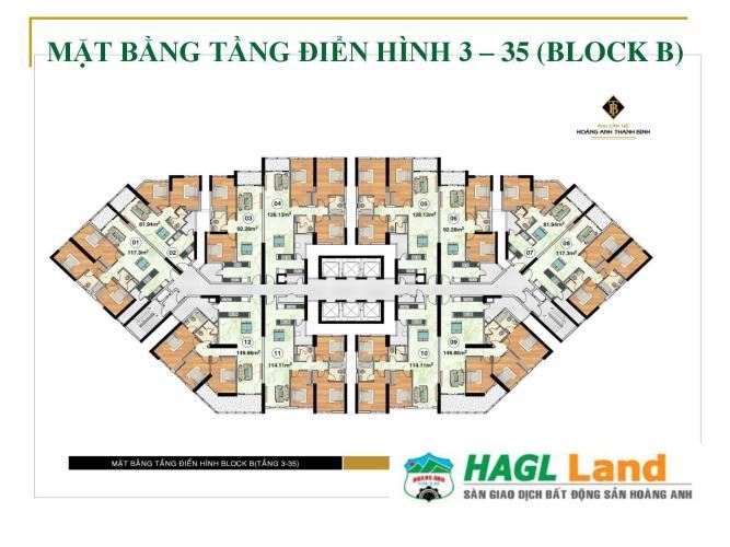 Mặt bằng block B Căn hộ Hoàng Anh Thanh Bình tầng cao, đầy đủ nội thất.