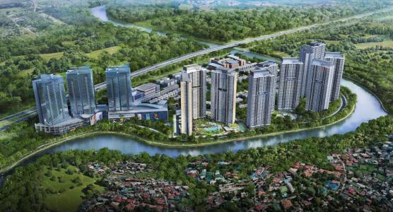 Palm City