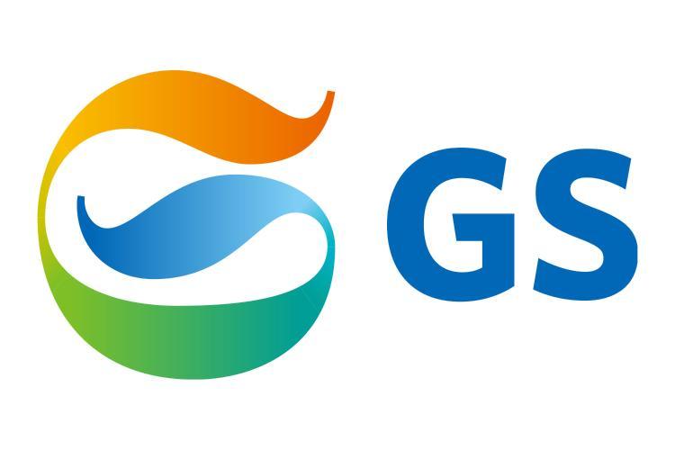GS SD