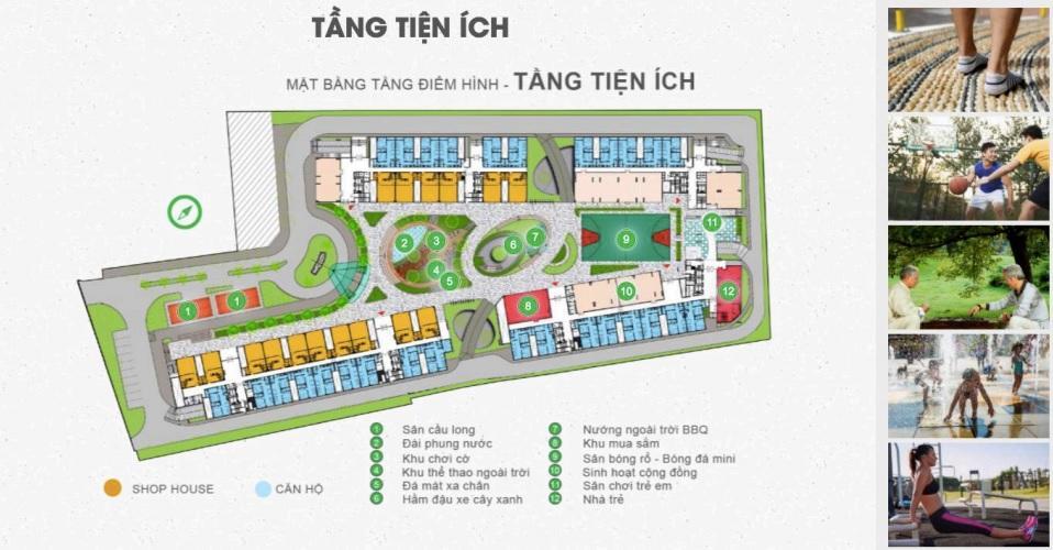 An Dân Residence - mat-bang-tien-ich-du-an-an-dan-residence.jpg