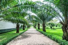 Everde City – Điểm sáng mới của bất động sản Long An