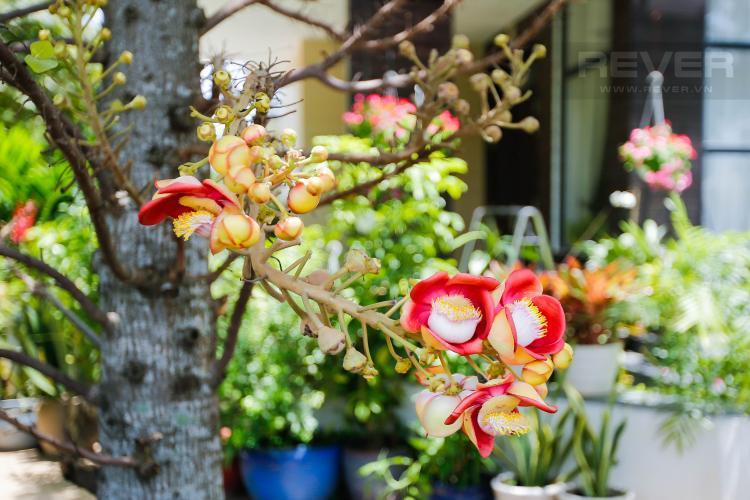 Vườn Hoa Biệt thự Khu Lucasta Villa, đường Liên Phương, Quận 9