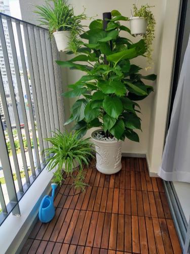 f6d27b31523db563ec2c.jpg Cho thuê căn hộ Masteri An Phú 2PN, tháp A, đầy đủ nội thất, view Xa lộ Hà Nội