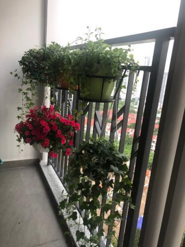 Ban công  căn hộ Saigon South Residence Căn hộ Saigon South Residence tầng trung, đầy đủ nội thất tinh tế.