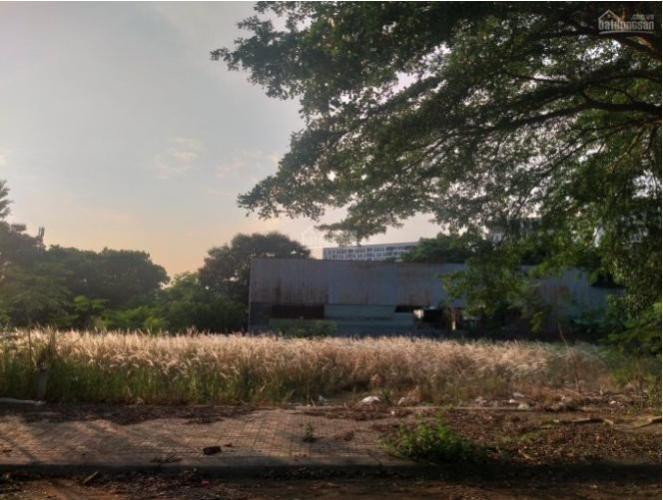 Bán đất nền đường số 9, phường 9, quận 9, diện tích đất 305m2, sổ hồng pháp lý đầy đủ