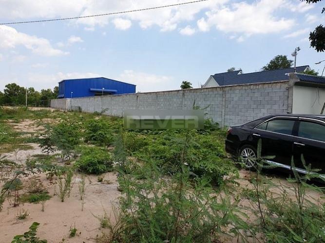 Đất nền mặt tiền đường Thanh Niên diện tích 260m2, có sổ hồng riêng.