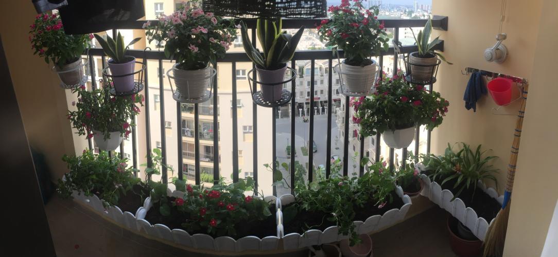 View căn hộ Cityland Park Hill, Gò Vấp Căn hộ tầng 9 Cityland Park Hills, ban công hướng Tây thoáng mát.