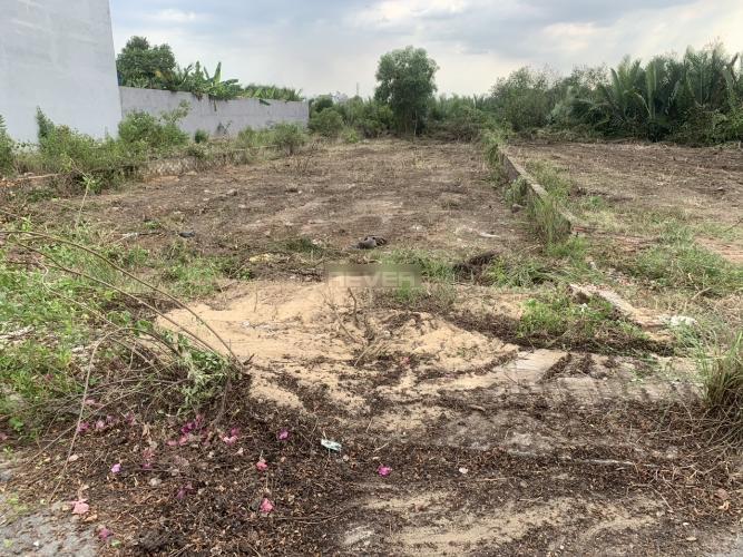 Đất nền dự án Long Thuận Villa Riverside diện tích 220m2, có sổ đỏ.