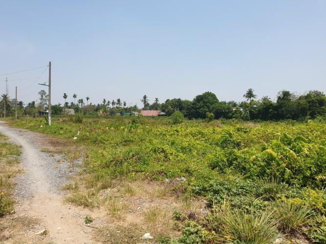 Đất nền mặt tiền đường rộng 1000m2, diện tích công nhận 10000m2.