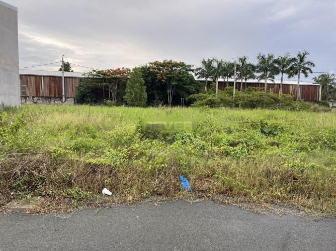 Đất nền KDC Đại Phú cách mặt  đường Trần Đại Nghĩa 50m, diện tích 80m2.