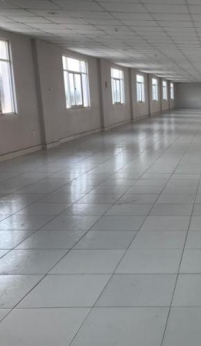 Không gian văn phòng Quận 9 Văn phòng mặt tiền đường Liên Phường diện tích 500m2, tiện ích đầy đủ.