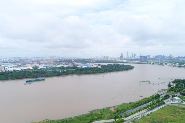 View One Verandah Quận 2 Căn hộ One Verandah tầng thấp hướng Đông, view sông thoáng mát.