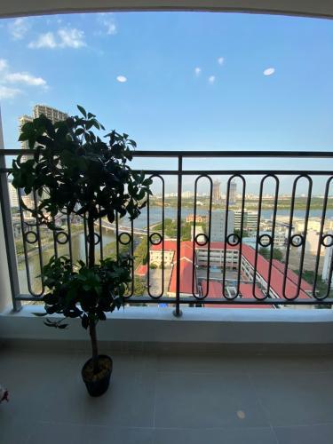 View ban công căn hộ Saigon Royal Căn hộ Saigon Royal 2 phòng ngủ, view hướng hồ bơi thoáng mát.