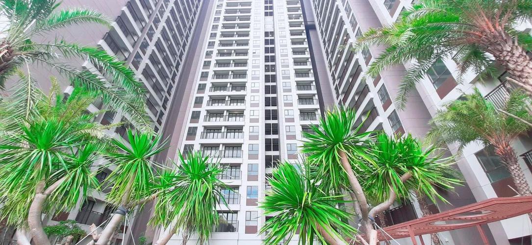 View căn hộ Opal Boulevard, Huyện Dĩ An Căn hộ Opal Boulevard thiết kế hiện đại, view thành phố sầm uất.